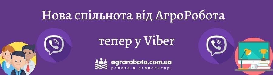 viber.jpg (27 KB)