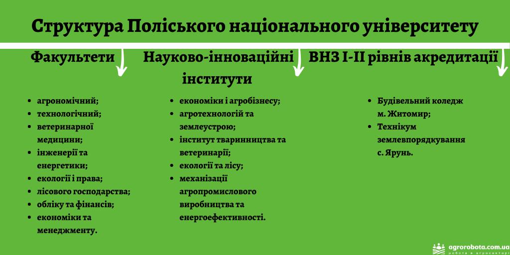 Структура_Поліського_національного_університету.png (124 KB)
