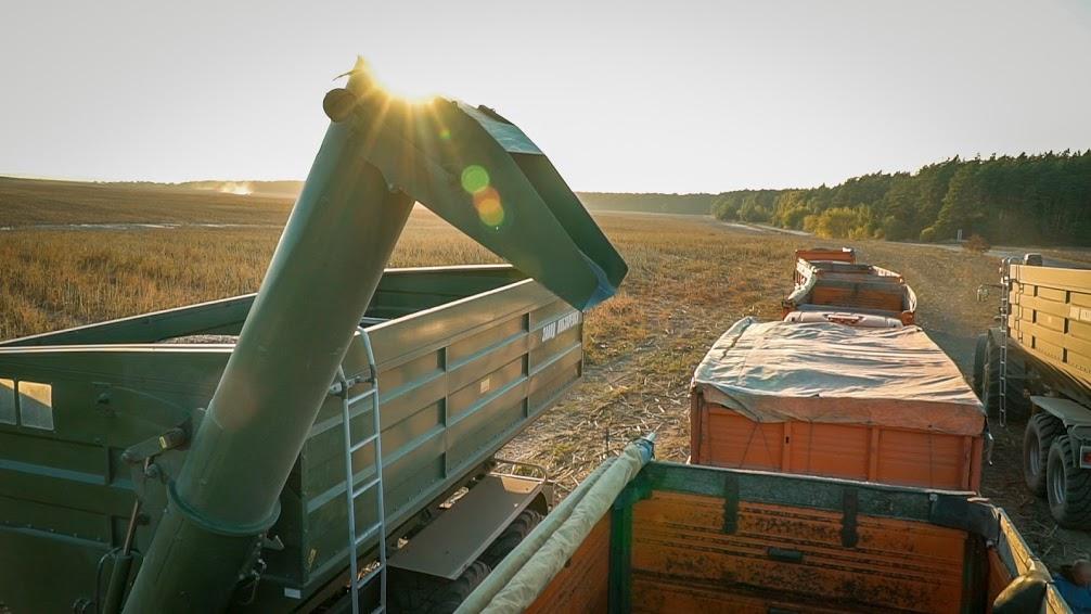 harveast-in-agro-work.jpg (113 KB)
